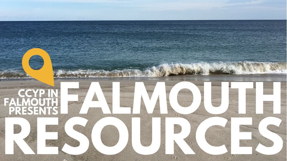 Ccyp In Falmouth Resource Blog Series