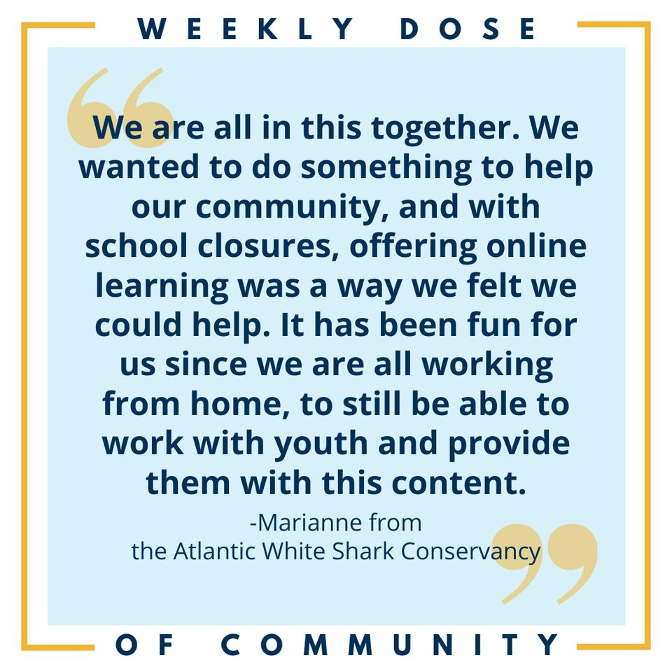Weekly Dose Of Community Quote Template