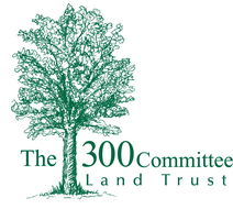 The 300 Committee
